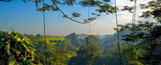 Rondji Restaurant Ubud Tempat Outbound di Bali Feature