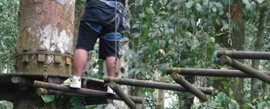 Outbound di Bali Treetop Kebun Raya Bedugul 07