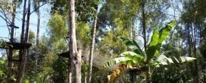 Lokasi Outbound di Bali Jungle Adventure - High Rope 20718