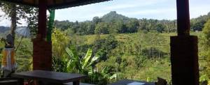 Outbound di Bali Jungle Adventure - View Restaurant 020718