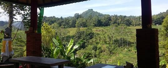 Outbound di Bali Jungle Adventure - View Restaurant 020718