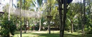 Tempat Outbound di Bali Jungle Adventure - Permainan Pohon 20718