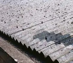 asbestos surveys will detect things like a corrugated asbestos roof