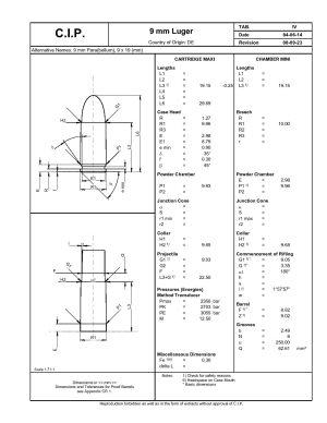 Scheda CIP del 9 × 19 mm