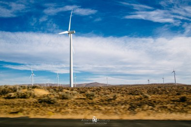Wind Farm in Central Washington