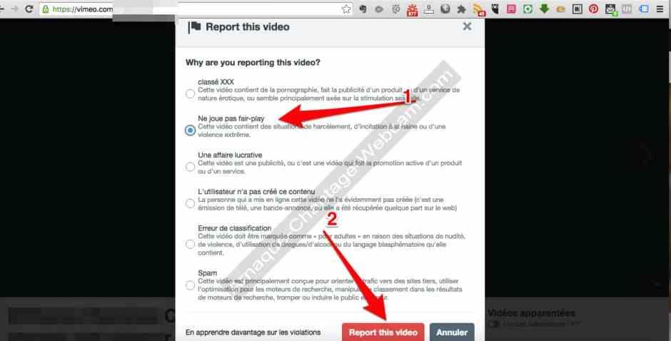 VIMEO signaler vidéo d'arnaque skype