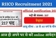 RIICO Recruitment 2021: Apply Online for 217 Posts