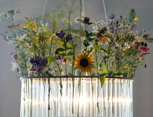 Maria S.C. single test tubes chandelier