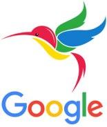 google algoritmo colibrí