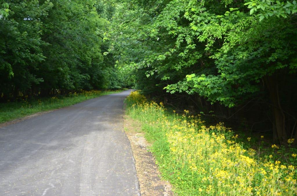Flamm City park trail