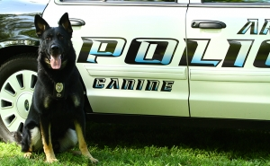 K-9 Sampson - Arnold PD
