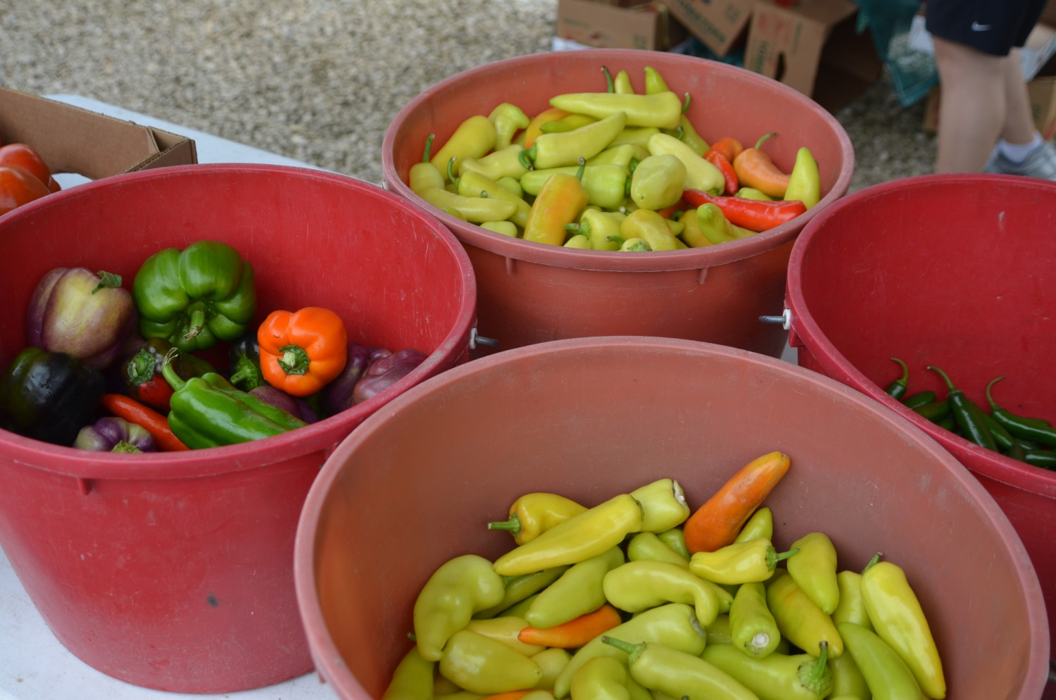 Four Buckets of Four Peppers
