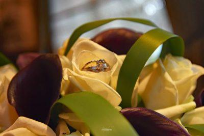Ringen op een bosje van rozen