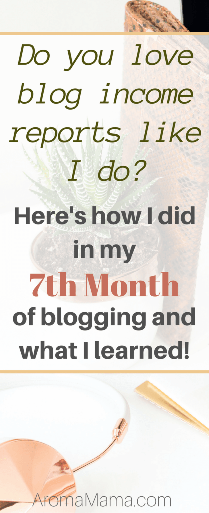 My Seventh Month of Blogging: Blog Stats and Income Report