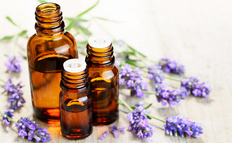 Top 15 Essential Oils For Sleep Aromaweb