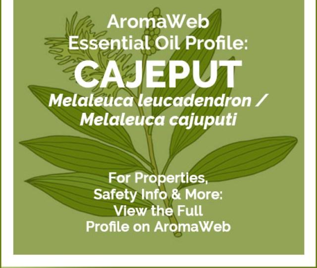 Cajeput Essential Oil Profile