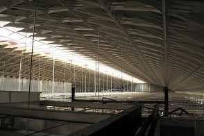 The Flight Shed roof