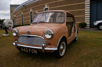 Delightful Mini Beach car