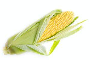 corn-yellow