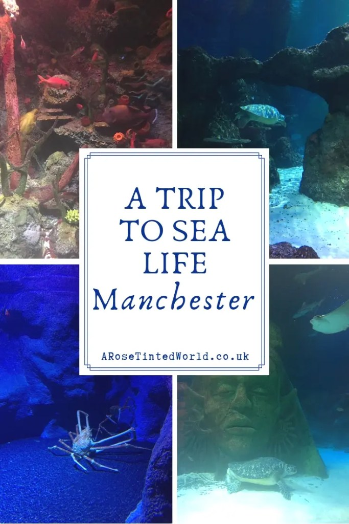 A Trip To Sea Life Manchester