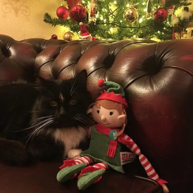 18th of December - elf with Joy