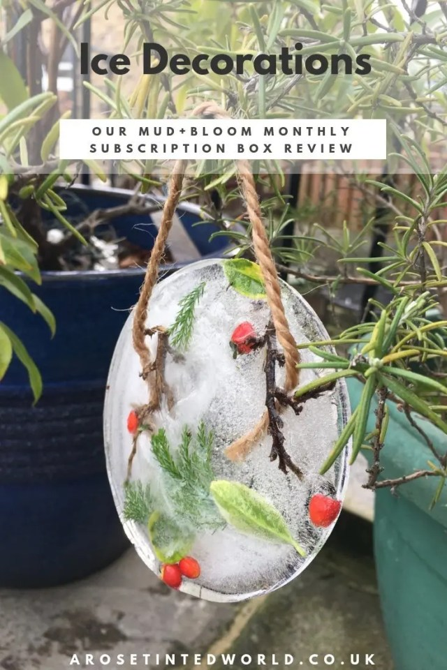 Mud + Bloom Subscription Box Review-2
