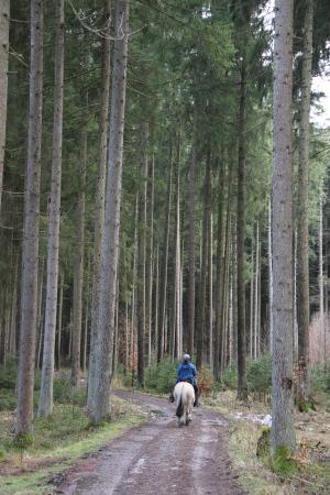 Kinderwagen-Wanderung in Aying mit Bräustüberl-Besuch