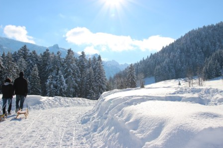 Winterwandern zur Kirchsteinhütte