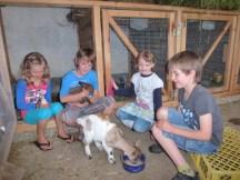 Kinder_Ziegen_BauernhofTouren