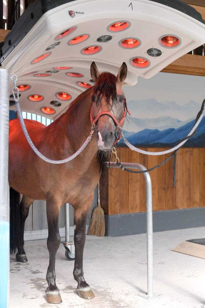 Cavalluna Park- die Pferde-Erlebniswelt in München