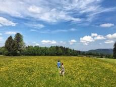 Unbekanntes Oberbayern - ein herrlicher Rundweg um das Kloster Rottenbuch