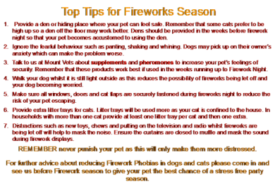 top tips for fireworks