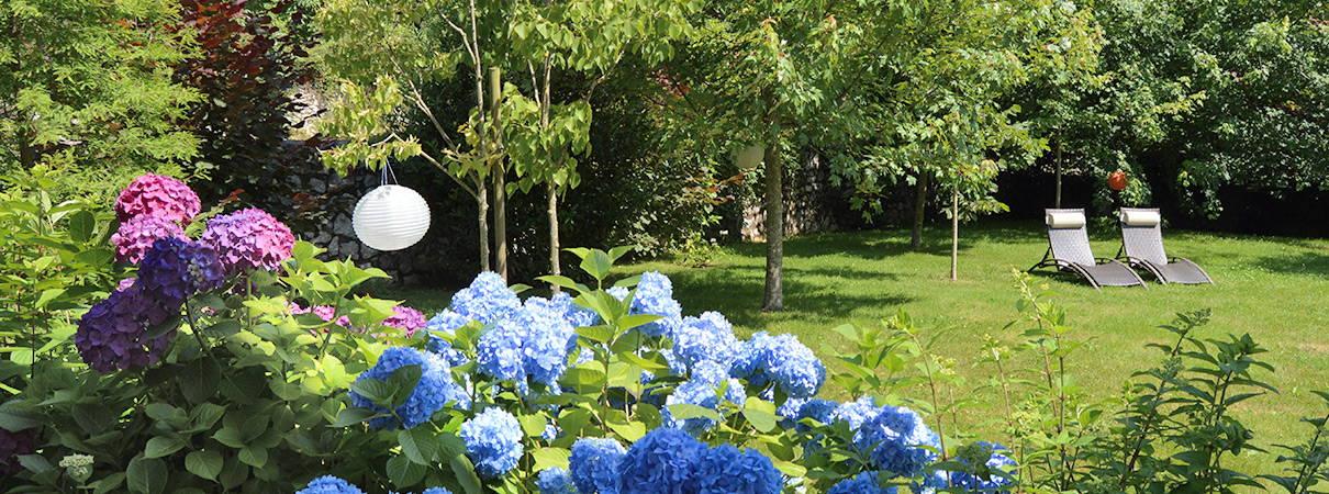 Farolillos y hortensias dan ambiente cálido y de relax a nuestro jardin