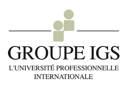 Groupe IGS, L'université professionnelle international