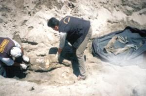 Hallan restos preincas en distrito Alto Selva Alegre, Arequipa: arqueólogos no pueden determinar origen de momias