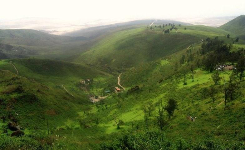Lomas de Lachay: un aventurero y hermoso lugar en Huaura