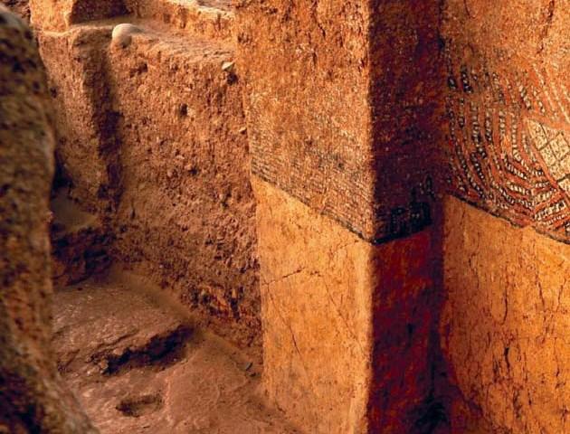 Sorprendentes hallazgos en la amazonia peruana