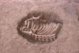 restos-3000-anos-cusco-descubren-3