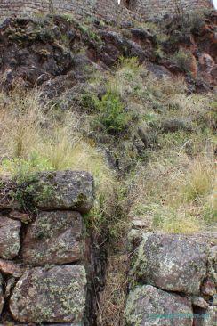 pisac-torreones-trekking-19