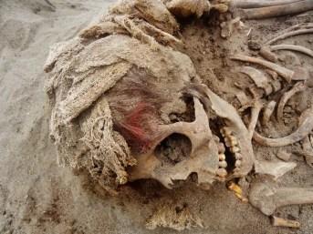 Muchas de las mortajas de algodón que envolvieron a las víctimas están bien conservadas. Se ha determinado mediante datación con carbono que se remontan a entre 1400 y 1450 d. C. FOTOGRAFÍA DE GABRIEL PRIETO