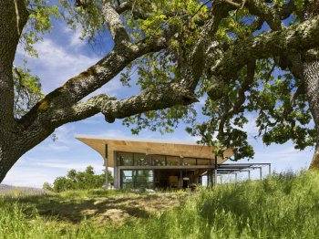 Caterpillar House - Feldman Architecture