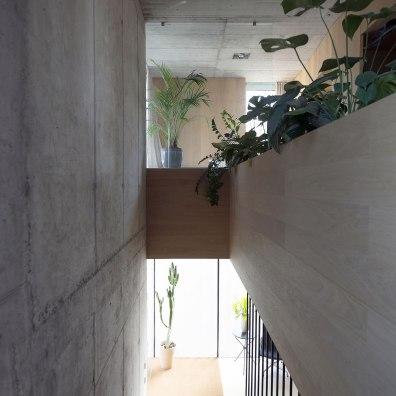Villa Criss-Cross Envelope - OFIS Architects