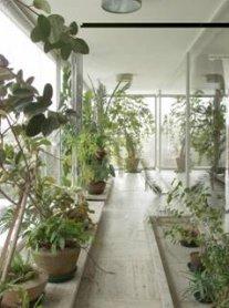 primitive pictures for living room pics of rooms decor arquitectura en linea - una pequeña historia