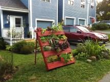 Jardines Urbanos Urban Gardens