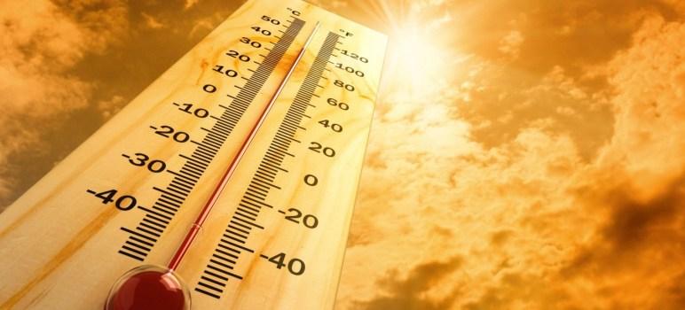 El mejor aislante térmico para techos