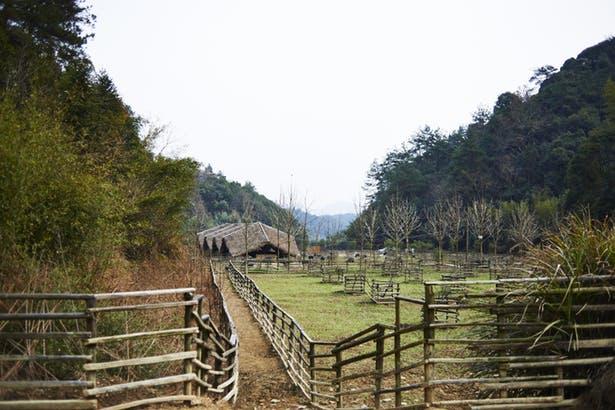 arquitectura_Taiyang_Organic_Farming_Commune_cercas