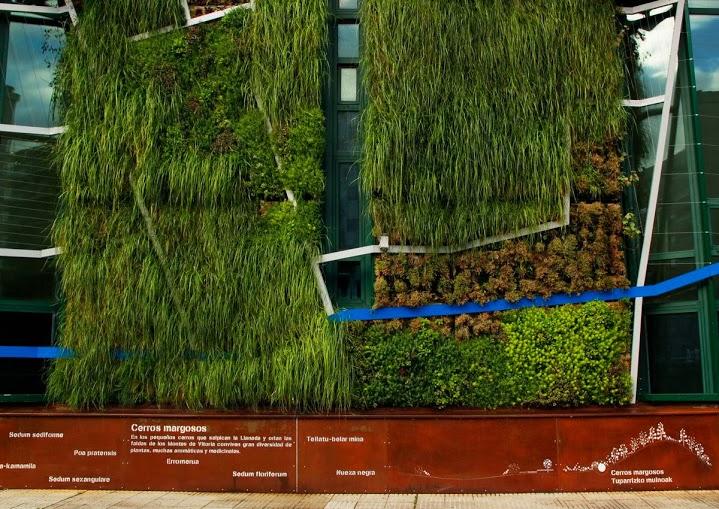 Fachada vegetal del Palacio de Congresos de Vitoria-Gasteiz - Urbanarbolismo