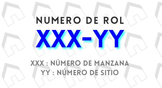 numero-de-rol_16