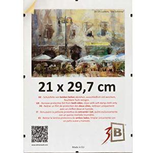 3B Set di 5 Pezzi Cornici a Giorno Clip 21x297 cm A4  Portafoto Senza Cornice con Vetro stirene