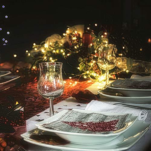 Litogo Luci LED Batteria 2 Pezzi Timer Catena Luminosa 10m 100 LED Filo Rame Ghirlanda Luminosa Lucine LED Decorative per Camere da Letto Giardino Casa Feste Natale Matrimonio Bianco Caldo